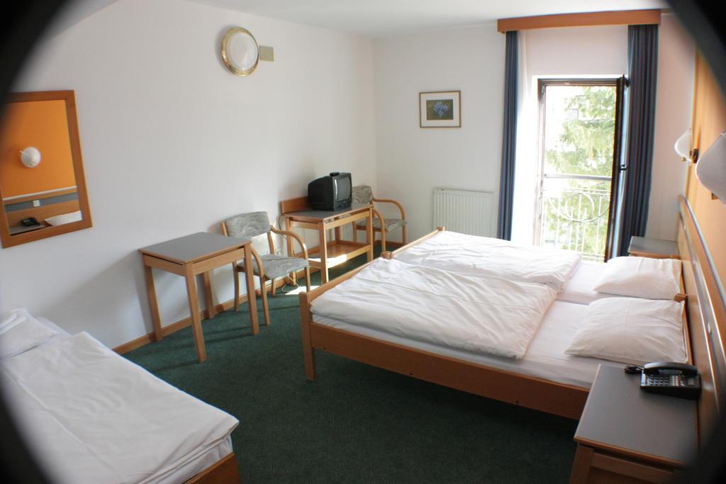 HOTEL-ALP-BOVEC-SLOVENIJA-TERME-19