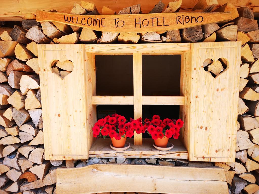 HOTEL-RIBNO-BLED-26