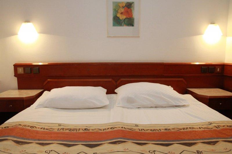 HOTEL-VITAL-terme-Slovenija-DEUS-TRAVEL-7