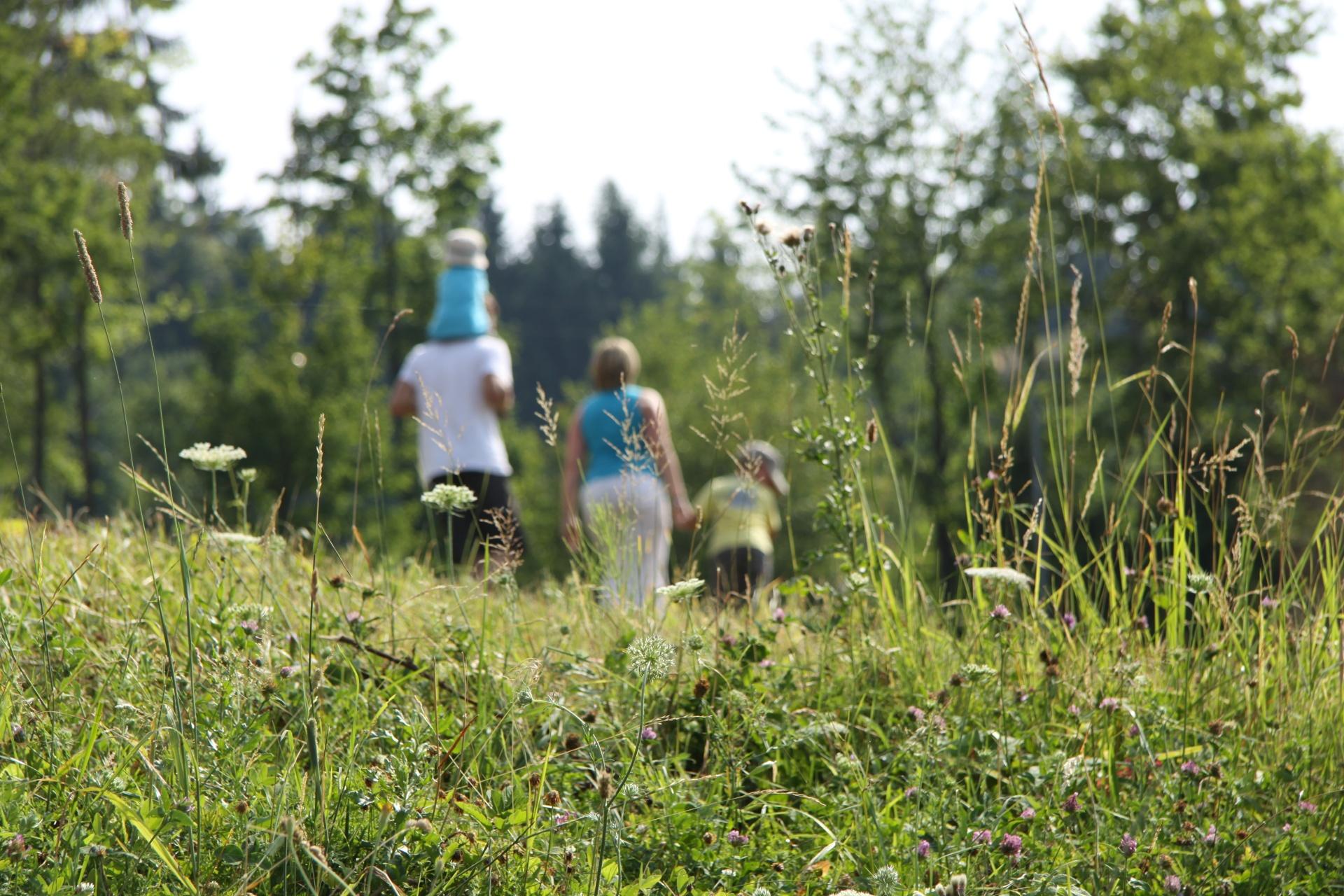 outdoor activities- hiking